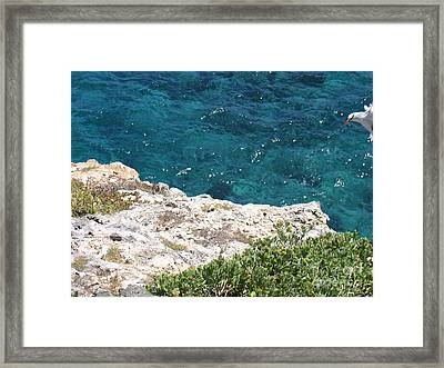 Framed Print featuring the photograph Antigua - Flight by HEVi FineArt