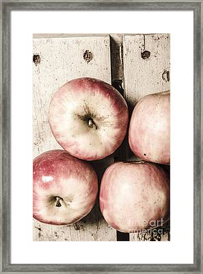 Antique Apples Framed Print by Jorgo Photography - Wall Art Gallery
