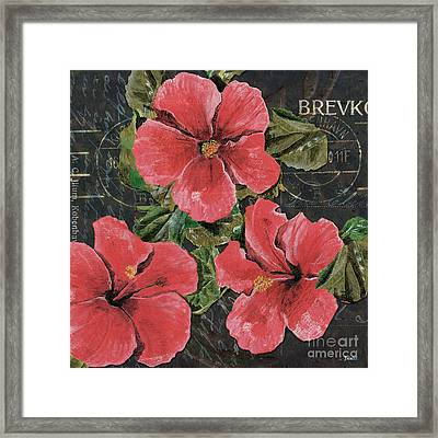 Antique Hibiscus Black 3 Framed Print by Debbie DeWitt