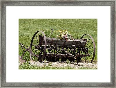 Antique Horse Drawn Seeder Framed Print