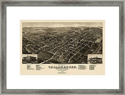 Antique Map Of Tallahassee Florida By H. Wellge - 1885 Framed Print by Blue Monocle