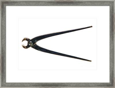 Antique Pliers Framed Print by Olivier Le Queinec