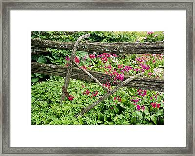 Framed Print featuring the photograph Antique Plow Handles by Alan L Graham