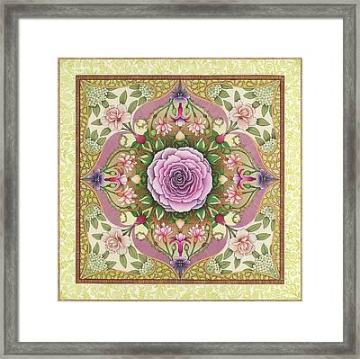 Antique Rose Framed Print by Isobel  Brook Haslam