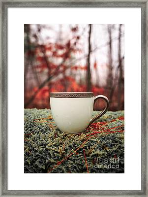 Antique Teacup In The Woods Framed Print