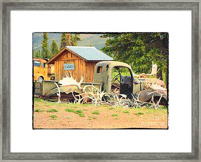 Antlers In The Yukon Framed Print