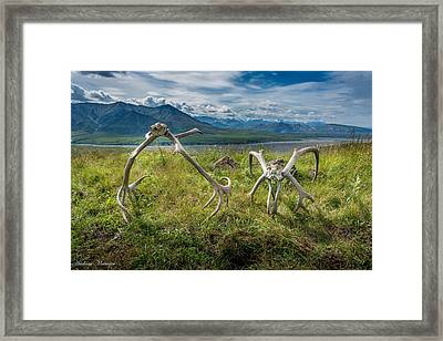 Antlers On The Hill Framed Print