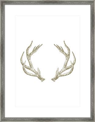Antlers Framed Print by Randoms Print