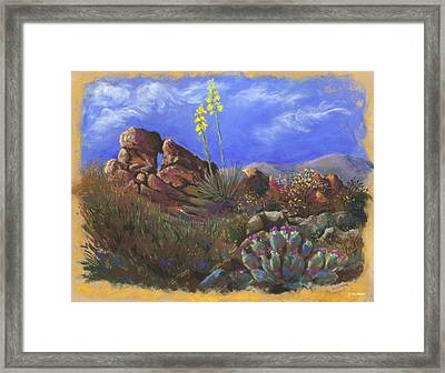 Anza Borrego April Framed Print