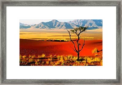Anza Borrego Desert Southern California Framed Print by Bob and Nadine Johnston