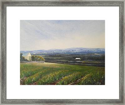 Framed Print featuring the painting Aotearoa by Jane  See