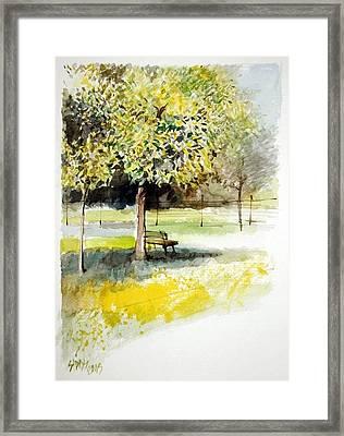 Autumn Shadows Framed Print by Lorand Sipos