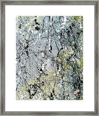 Ap 3 Framed Print
