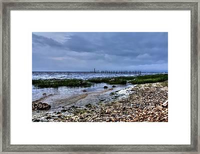 Apalachee Bay  Framed Print by Debra Forand