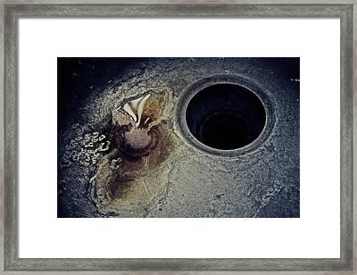 Apathy Framed Print by Odd Jeppesen