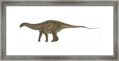 Apatosaurus, A Sauropod Dinosaur Framed Print by Vitor Silva
