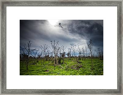 Apocalyptic Landscape Framed Print