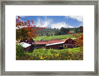 Appalachian Dairy Farm Framed Print by Debra and Dave Vanderlaan