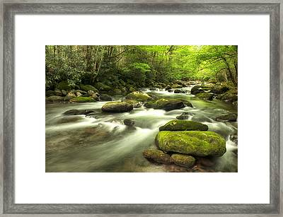 Framed Print featuring the photograph Appalachian Spring Stream by Phyllis Peterson