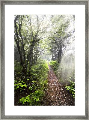 Appalachian Trail Framed Print by Debra and Dave Vanderlaan