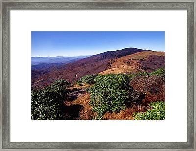 Appalachian Trail From Jane Bald Framed Print by Thomas R Fletcher