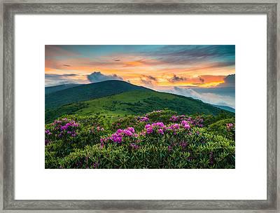 North Carolina Appalachian Trail Roan Mountain Highlands Framed Print