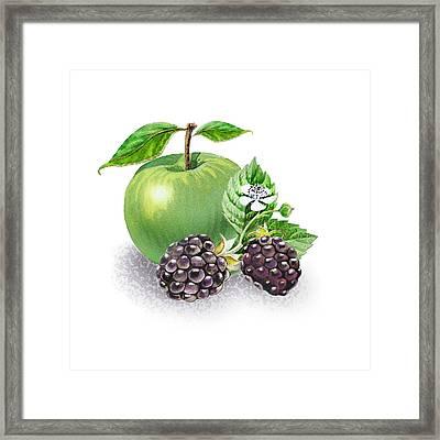 Apple And Blackberries Framed Print