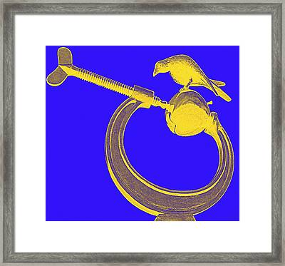 Apple And Clamp Framed Print by Randall Weidner