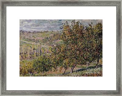 Apple Blossom Framed Print by Claude Monet