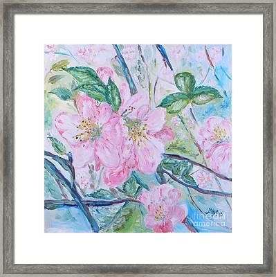 Apple Blossom Framed Print by Marina Urchukina