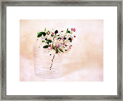 Apple Blossom Still Life Framed Print by Jessica Jenney