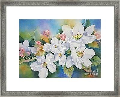 Apple Blossom Time Framed Print by Deborah Ronglien