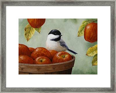 Apple Chickadee Greeting Card 1 Framed Print by Crista Forest