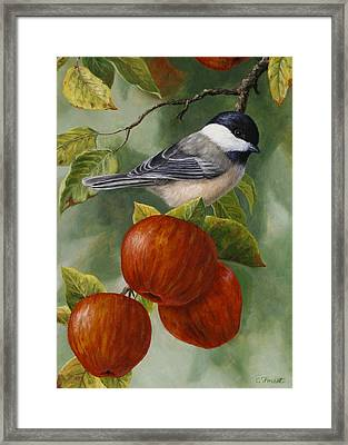 Apple Chickadee Greeting Card 2 Framed Print by Crista Forest