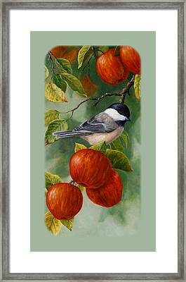 Apple Chickadee Iphone5 Case V2 Framed Print