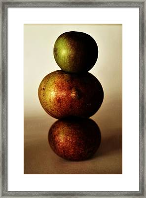 Apple Equilibrium Framed Print by Stephen  Daunt