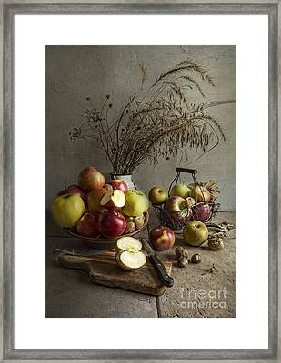 Apple Fest Framed Print by Elena Nosyreva
