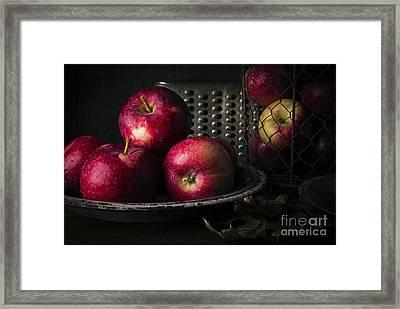 Apple Harvest Framed Print by Edward Fielding