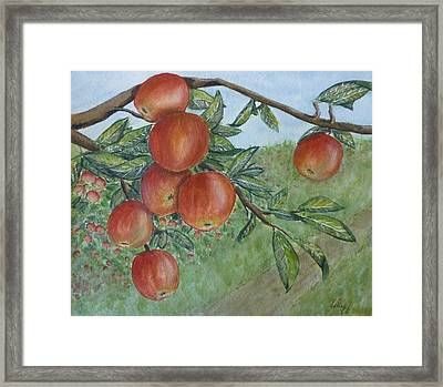 Framed Print featuring the painting Apple Orchard by Kelly Mills