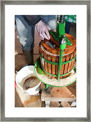 Apple Press In Use Framed Print by Ashley Cooper