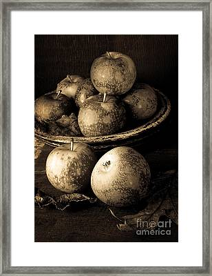 Apple Still Life Black And White Framed Print by Edward Fielding