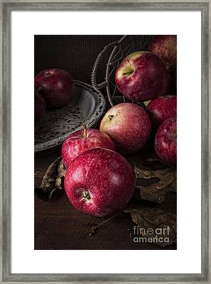 Apple Still Life Framed Print by Edward Fielding