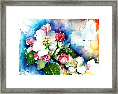 Apple Tree Blossom - Flowers Made In Watercolor Technique On Heavy Paper Framed Print