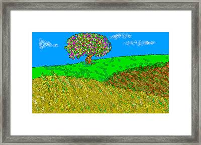 Apple Tree Hill Framed Print
