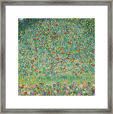 Apple Tree I Framed Print by Gustav Klimt