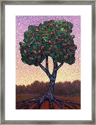 Apple Tree Framed Print by James W Johnson