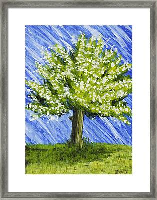 Apple Tree Painting With White Flowers Framed Print by Keith Webber Jr