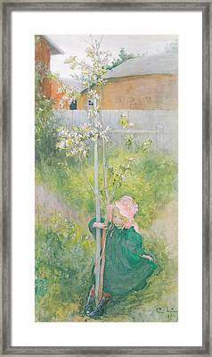 Appleblossom Framed Print