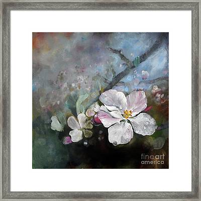 Appleblossom Framed Print by Stephanie  Koehl