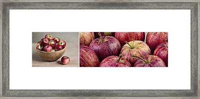 Apples 01 Framed Print by Nailia Schwarz